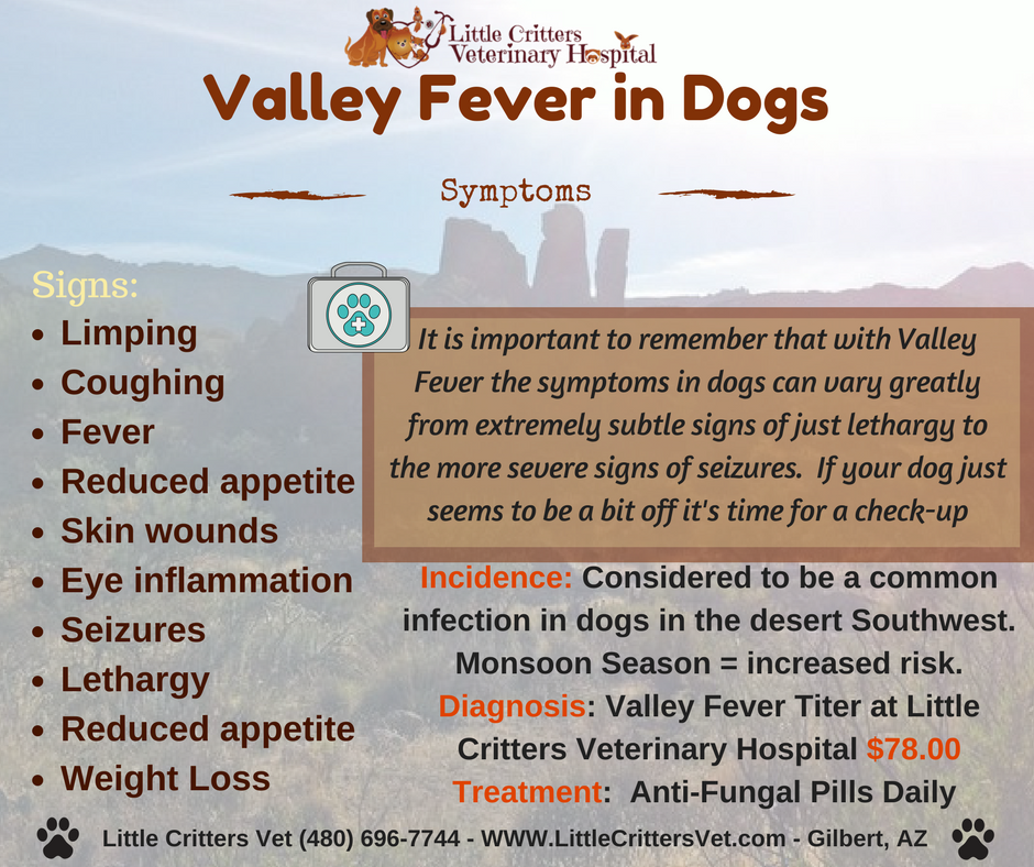 Valley Fever in Dogs - Symptoms