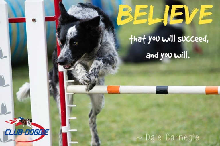 Club-Doggie Believe you can succeed